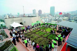 高雄市工務局鼓勵民眾闢建綠屋頂,在屋頂種菜。 / 記者謝梅芬�攝影