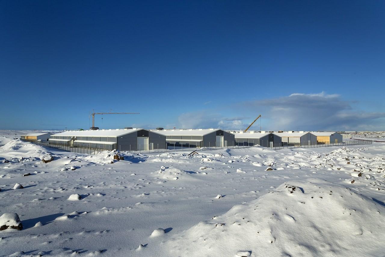 冰島比特幣採礦電腦也被偷 價值6000萬