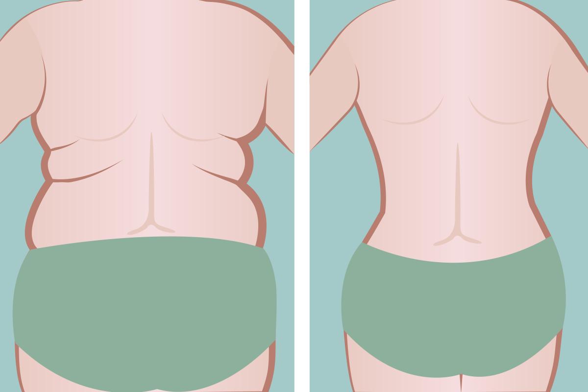 女性 体 脂肪 理想 率