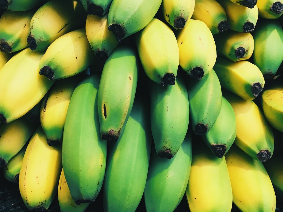 吃「綠香蕉」助減肥 打成果汁也是好選擇! | 橘世代
