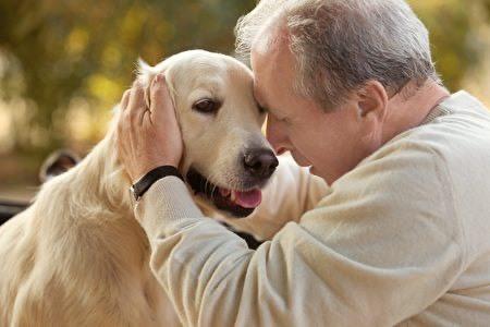科學證實養狗的好處這麼多!療癒紓壓還可顧心臟   橘世代