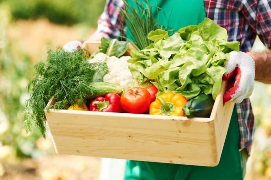 免出門就可以輕鬆買、健康吃!防疫「蔬菜箱」直接幫你送到家 | 橘世代