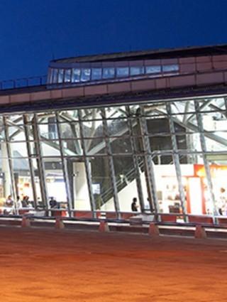 </p><!--1--><p> 台南站綠地轉為生態城