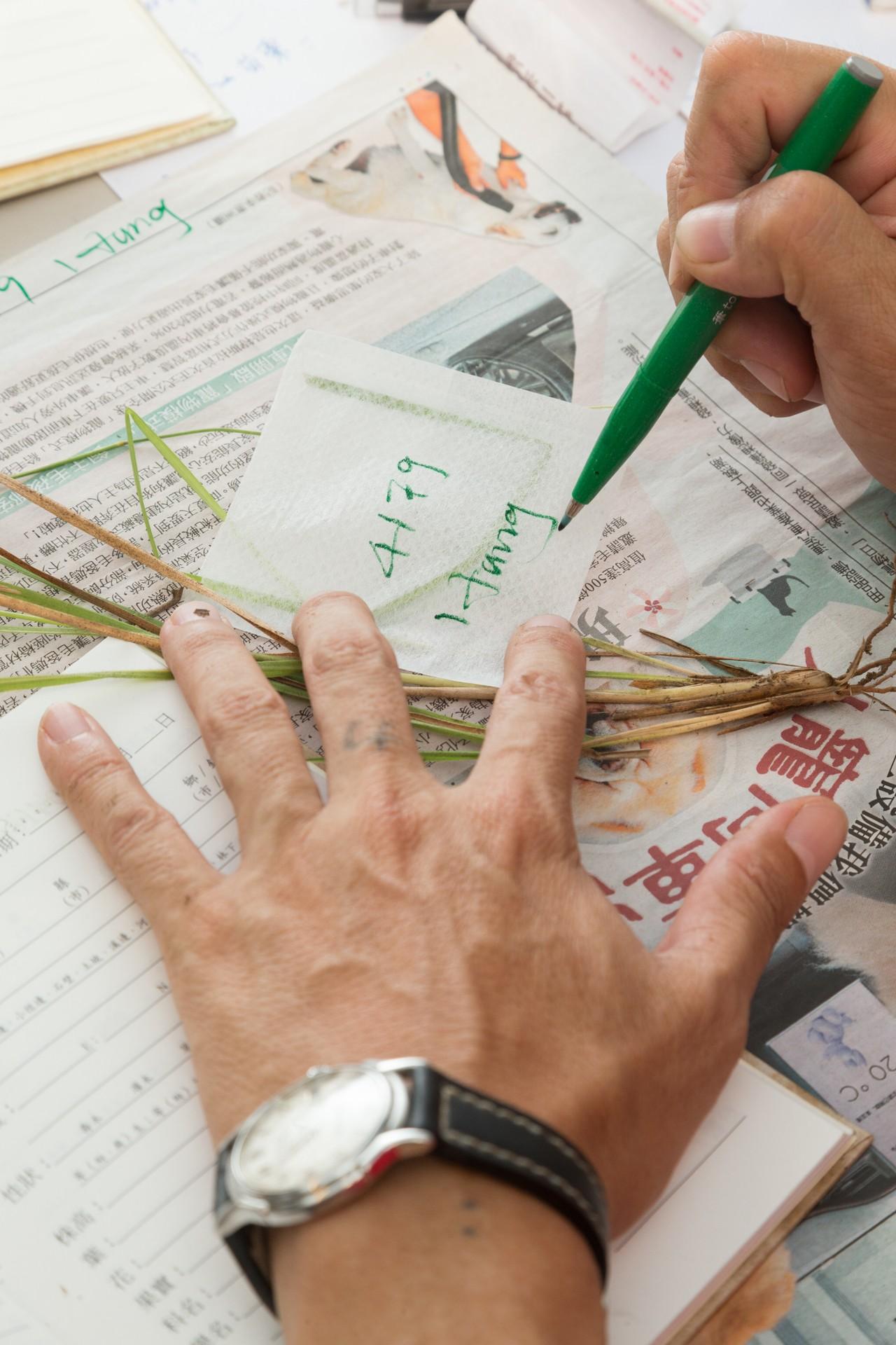 每回採集回植物,洪信介會立刻記錄至小手冊中。攝影/陳立凱