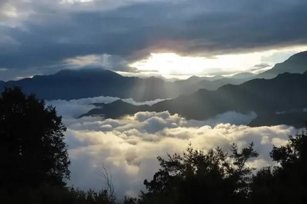 阿里山森林遊樂區小笠原山,日出、雲海、雲瀑同時出現。圖/蘇家弘提供
