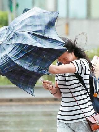 你愛的颱風假,但你真的了解它嗎?