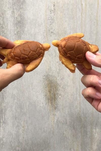 小琉球5大景點美食懶人包 熱帶七彩冰+療癒海龜燒必吃