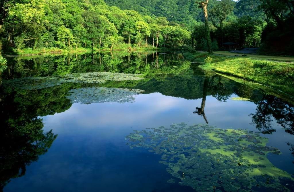 福山植物園一景。圖擷自宜蘭勁好玩網頁