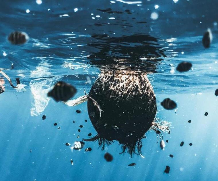 看《海洋陰謀》了嗎?該怎麼看這部Netflix紀錄片